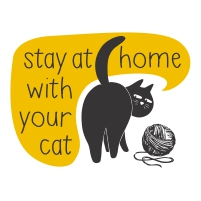 Descarcare-Stay-home-cat